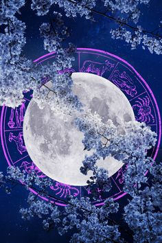 Plus, the power of Pluto will help fire up your determination. Click through for your weekly horoscope. Weekly Horoscope, Your Horoscope, Determination, Flourish, Taurus, Venus, Romantic, Fire, Feelings