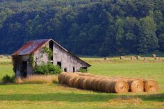 Otway Barn And Hay Rolls by Photo's by Roy, via Flickr
