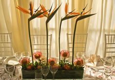 Lemontree Concepts ensures originality, creativity and character equal to the needs of each and every event. Africa Theme Party, African Party Theme, Party Centerpieces, Flower Centerpieces, Wedding Decorations, Table Decorations, Centrepieces, African Christmas, Orange Wedding Colors