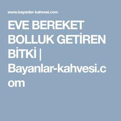EVE BEREKET BOLLUK GETİREN BİTKİ | Bayanlar-kahvesi.com