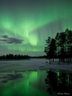 """www.thesuntoday.org - What a beautiful way to end February! Aurora! This photo was taken by Nenne Åman in Revi, outside Arjeplog, Northern Sweden. """"We missed the last two Last nights of auroras due to snowstorm in northern Sweden, but yesterday night it just seemed like the auroras waited for us to arrive before it showed up. The show was short but very beautiful!"""" said Åman. (credit: Nenne Åman and spaceweather.com)"""