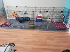 Dog/Rabbit DIY Rustic Modern Cute Pet Gate Enclosure Habitat Exercise X-Pen Ideas Diy Bunny Cage, Bunny Cages, Bunny Play Pen, Rabbit Information, Rabbit Pen, Rabbit Enclosure, Bunny Room, Indoor Rabbit, Rabbit Tattoos