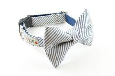 Bow Tie Collar (DIY)