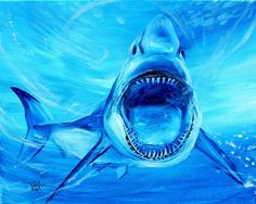"""""""Abstract Great White in Blue"""" (2014) Original on canvas, 16x20 inches. Available: http://www.ipaintfish.com/"""