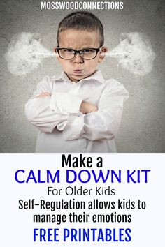 DIY Calm Down Kit - teach how to self-regulate, manage big emotions, reduce stress. Tools and strategies to help a anxious or emotional child calm down. Emotional Regulation, Self Regulation, Calm Down Kit, Social Emotional Activities, Anxiety In Children, Adhd Kids, Sensory Processing, Parenting Advice, Autism Parenting
