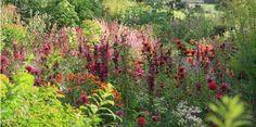 Hunting Brook #Garden @huntingbrook https://www.pinterest.com/pin/96968198203270563/…