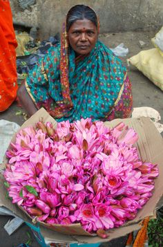 Pink lotuses on the morning flower market in India Mehndi, India And Pakistan, India India, India Tour, Indian Colours, Amazing India, Pink Lotus, Lotus Flowers, Indian People
