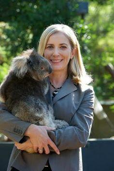jenny gray ceo #zoos #victoria with a #koala bear