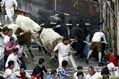 Un mozo arroya a un toro de la manada.