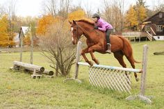 Throwback to jumping bareback on xc course!