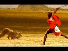 National Geographic Documentary - Lions vs Maasai Warriors - Wildlife An...