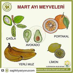 #Repost @saglikliyasiyoruzcom with @get_repost  MART AYI MEYVELERİ  Sağlıklı beslenenler sebze ve meyveleri mevsiminde yemeye özen gösteriyor çünkü mevsim dışında yetişen sebzeler seralarda bol miktarda yapay gübre ve tarım ilacıyla yetiştiriliyor. Ancak fark ettik ki her mevsimde her türlü sebzeyi meyveyi marketlerde görerek büyümüş olan yeni kuşaklar hangi sebze/meyvenin hangi mevsimin ürünü olduğunu bilmiyorlar. Biz de her ay ayın sebze ve meyvelerini Sağlıklı Yaşıyoruz sayfasında… Slow Food, Martini, Banana, Fruit, Vegetables, Health, Beverages, Foods, Kitchens