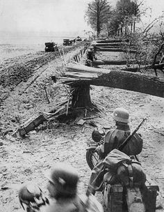A line of trees in Holland which have been dynamited in an attempt to slow the German advance, 1940 - pin by Paolo Marzioli Warring States Period, German Uniforms, Ww2 Photos, Korean War, Historical Pictures, Vietnam War, World War Two, Wwii, Holland