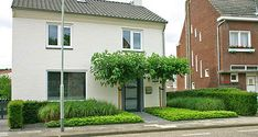 tuinontwerp voortuin Simpelveld Zuid-Limburg Small Garden Design, Facade, New Homes, City, Outdoor Decor, Green, Flowers, House, Inspiration