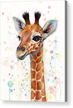 Watercolor Acrylic Print featuring the painting Baby Giraffe Watercolor by Olga…