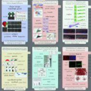 Publications of DanielKeim