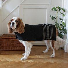 fairisle stripe alpaca dog jacket by alpaca pooch | notonthehighstreet.com