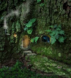 Home in a tree  ************************************************  Moss - #fairy #garden #tree #whimsical #miniature - tå√