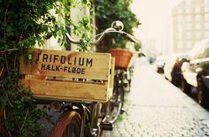 #BikeLove. #Basket.