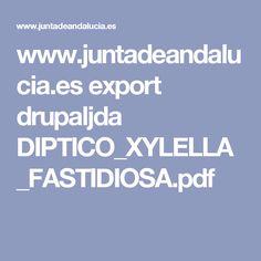 www.juntadeandalucia.es export drupaljda DIPTICO_XYLELLA_FASTIDIOSA.pdf