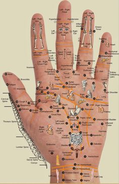 Hand Reflexology Acupressure Map