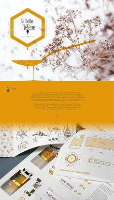 A basic identity & logo design for a honey production unit in Northern Europe. Design process is covering the logotype, the jar wraping and the packaging materials. Label Design, Packaging Design, Web Design, Logo Design, Design Ideas, Honey Logo, Honey Label, News Website Design, Honey Packaging