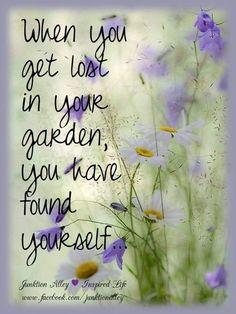 Garden Club, Garden Art, Garden Plants, Beautiful Gardens, Beautiful Flowers, Coastal Gardens, Garden Journal, Garden Quotes, Just Dream