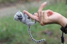 Monkey..