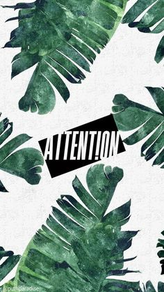 Charlie Puth - Attention | Phone wallpaper (palm trees)