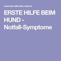 ERSTE HILFE BEIM HUND - Notfall-Symptome