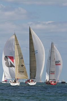 A mix of class 0 and 1 IRC yachts - 'Haspa Hamburg', 'Venomous' and 'John B' heading for the finish line with spinnakers during Aberdeen Asset Management Cowes Week. #sailboats #boats #sailing
