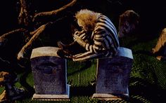 scary death tim burton eyes creepy weird horror Halloween my post dark morbid beetlejuice dead monster Demon Macabre spooky twisted disturbing horror gif creepy gif tim burton gif Monster gif weird gif macabre gif beetlejuice gif fnemosyne disturbing gif Michael Keaton, Winona Ryder, Alec Baldwin, Scary Movies, Horror Movies, Tim Burton Personajes, Beetlejuice Movie, Beetlejuice Halloween, Halloween Town