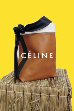 celine campaign First Look: Cline Autumn/Winter 2016 Campaign - The Front Row View Celine Campaign, Baskets, Ysl Beauty, Celine Bag, Fashion Advertising, Advertising Campaign, Brand Collection, Prada Bag, Style Snaps