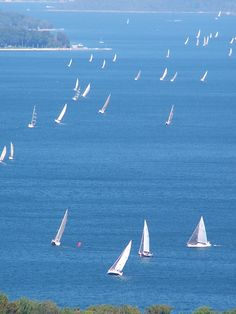 Lake Charlevoix yacht race.  Love, love watching this race..