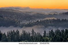 Stock Photo: Peaceful landscape of Aulanko nature reserve park in Finland. Thick fog covering the scene in the early morning. HDR image.
