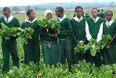 Gardens for Life...international network of school gardening projects