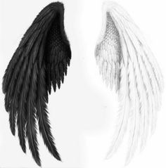 to drawing wings Angel Wings Art, Angel Wings Drawing, Angel Art, Wings Of Angels, Wings Wallpaper, Angel Wallpaper, Background Images For Editing, Black Background Images, Schulterpanzer Tattoo