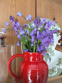 Pretty bluebells and forget-me-nots from my garden