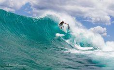 A few frames later. Hawaiian braddah Triston H. making it look fun on a beautiful Aloha Friday... #hawaiian #bodyboard #waves #aloha