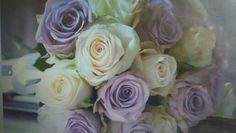 Wild Flowers, Rose, Plants, Wedding, Valentines Day Weddings, Pink, Wildflowers, Plant, Roses