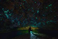 A.G. Howard - nubbsgalore: the waitomo limestone caves on new...