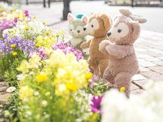 Disney Bear, Disney Love, Disney World Magic Kingdom, Walt Disney World, Duffy, Cartoon, Friends, Spring, Illustration