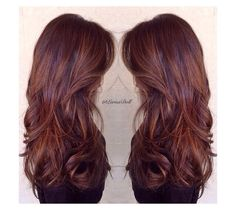 Dimensional violet brown