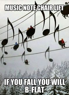 haha. Music humour…- For 25% OFF your next purchase at www.naturalhealthsource.com use coupon code gobig13s.