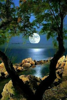 Ideas photography nature beautiful landscapes for 2019 Beautiful Moon, Beautiful World, Beautiful Places, Beautiful Scenery, Beautiful People, Shoot The Moon, Nature Pictures, Amazing Nature, Belle Photo