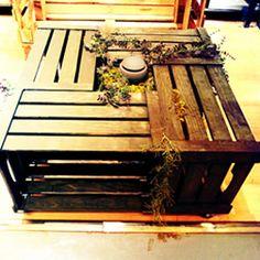 Table basse végétale - Atelier déco Zôdio Massy http://massy.zodio.fr/ete-creatif/crea/fiche/id/167