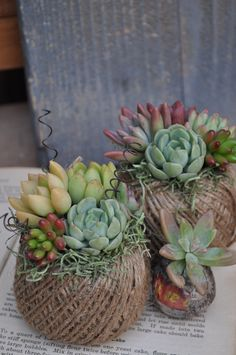 String balls and wire twists planted with succulents, pop tiny jar inside & voila: easypeasy table centrepieces.