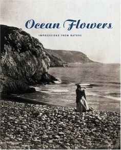 Book: 'Ocean Flowers: Impressions from Nature by Carol Armstrong' #WilliamsSonoma #beachchic