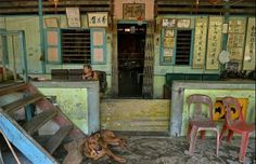 Pulau Ubin tops the list of landmarks Singaporeans most want to see conserved. The island still has kampung houses and wildlife-rich forests. More on Singapore's history and heritage at http://www.straitstimes.com/singapore-heritage  Photo: Kua Chee Siong/The Straits Times