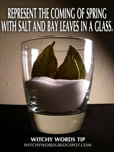 Witchy Words Tip: Represent the coming of spring with salt and bay leaves in a glass.  #wicca #imbolc